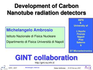 Development of Carbon Nanotube radiation detectors
