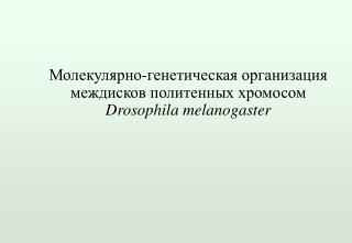 ???????????-?????????? ? ? ??????????? ????????? ?????????? ????????  Drosophila melanogaster