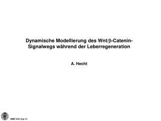 Dynamische Modellierung des Wnt/ b -Catenin-Signalwegs während der Leberregeneration A. Hecht