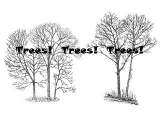 Trees!  Trees!  Trees!