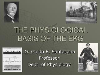 THE PHYSIOLOGICAL BASIS OF THE EKG