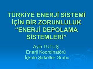 """TÜRKİYE ENERJİ SİSTEMİ İÇİN BİR ZORUNLULUK """"ENERJİ DEPOLAMA SİSTEMLERİ"""""""