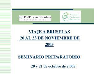 VIAJE A BRUSELAS   20 AL 23 DE NOVIEMBRE DE 2005  SEMINARIO PREPARATORIO