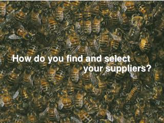 How do you find and select                              your suppliers?