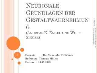 Neuronale Grundlagen der Gestaltwahrnehmung  (Andreas K. Engel und Wolf Singer)