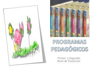 PROGRAMAS PEDAGÓGICOS