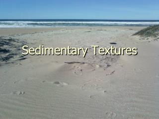 Sedimentary Textures