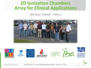 2D Ionization Chambers Array for Clinical Applications