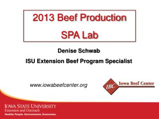 Denise Schwab ISU Extension Beef Program Specialist
