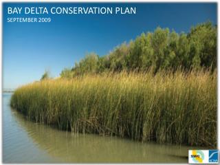 BAY DELTA CONSERVATION PLAN SEPTEMBER 2009