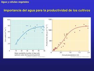 Importancia del agua para la productividad de los cultivos