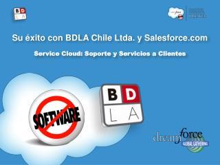 Su éxito con BDLA Chile Ltda. y Salesforce Service Cloud: Soporte y Servicios a Clientes