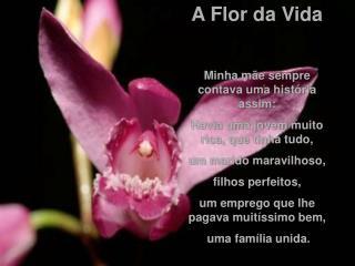 A Flor da Vida  Minha m e sempre contava uma hist ria assim: Havia uma jovem muito rica, que tinha tudo,  um marido mara