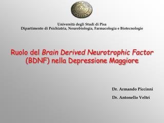 Ruolo del  Brain Derived Neurotrophic Factor  (BDNF) nella Depressione Maggiore