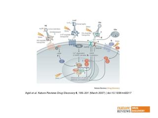 Agid  et al . Nature Reviews Drug Discovery 6 , 189 –2 01 (March 2007) | doi:10.1038/nrd2217