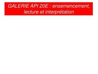 GALERIE API 20E : ensemencement, lecture et interprétation