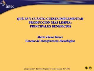 QU  ES Y CU NTO CUESTA IMPLEMENTAR PRODUCCI N M S LIMPIA:  PRINCIPALES BENEFICIOS   Mar a Elena Torres Gerente de Transf