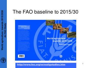 The FAO baseline to 2015/30