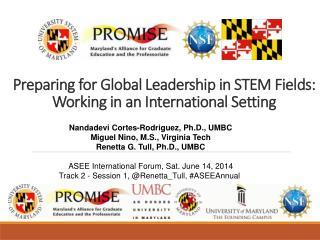 Preparing for Global  L eadership in STEM Fields: Working in an International Setting