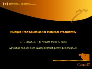 Multiple Trait Selection for Maternal Productivity