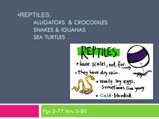 Reptiles :  Alligators  & Crocodiles 	Snakes & Iguanas 	Sea Turtles