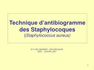 Technique d antibiogramme des Staphylocoques Staphylococcus aureus