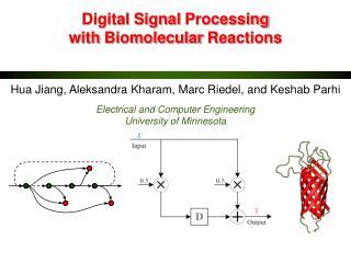 Digital  Signal  Processing  with  Biomolecular  Reactions