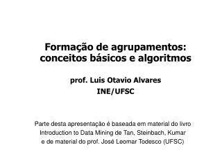 Formação de agrupamentos:  conceitos básicos e algoritmos prof. Luis Otavio Alvares INE/UFSC