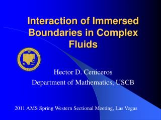 Interaction of Immersed Boundaries in Complex Fluids