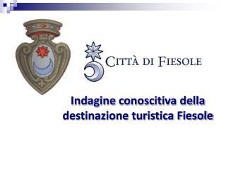 Indagine conoscitiva della destinazione turistica Fiesole