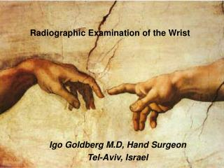 Igo Goldberg M.D, Hand Surgeon Tel-Aviv, Israel