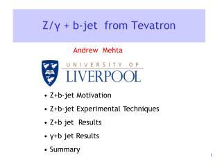 Z/ γ  + b-jet  from Tevatron