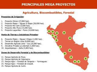 Proyectos de Irrigación : Proyecto Olmos (27,000 has).