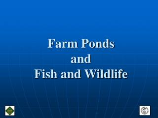 Farm Ponds and  Fish and Wildlife