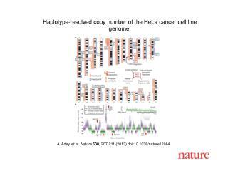 A   Adey  et al. Nature 500 , 207-211 (2013)  doi:10.1038/nature12064