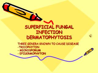 SUPERFICIAL FUNGAL INFECTION DERMATOPHYTOSIS