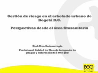 Gestión de riesgo en el arbolado urbano de Bogotá D.C.  Perspectivas desde el área fitosanitaria