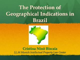 The Protection of Geographical Indications in Brazil