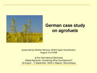 German case study  on agrofuels  presented by Mireille Hönicke, BUKO Agrar Koordination