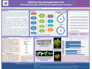 Walking into post-genomics era  --Virus-induced gene silencing for soybean gene function--