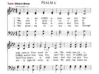 Tune:  Olive's Brow