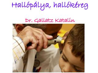 Hallópálya, hallókéreg Dr. Gallatz Katalin