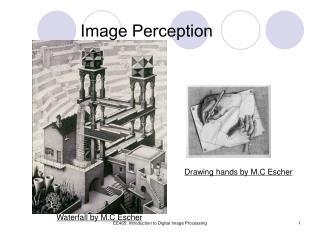 Image Perception