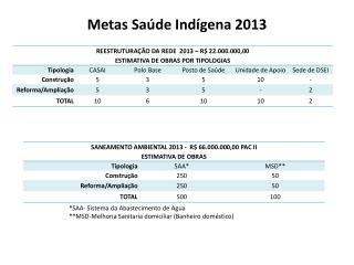 Metas  Saúde Indígena 2013