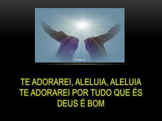 Te adorarei, aleluia, aleluia Te adorarei por tudo que és Deus é bom