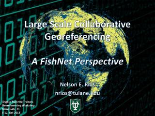 Large Scale Collaborative Georeferencing A FishNet Perspective