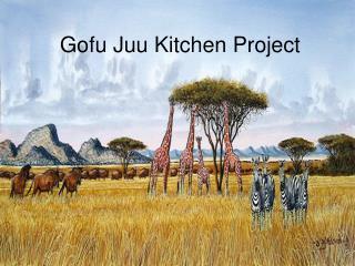 Gofu Juu Kitchen Project