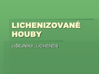 LICHENIZOVANÉ  HOUBY