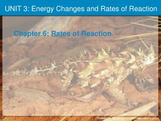 UNIT 3: Energy Changes and Rates of Reaction