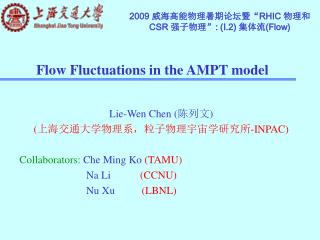 Flow Fluctuations in the AMPT model